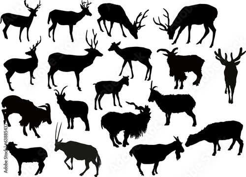 eighteen deers and goats silhouettes isolated on white