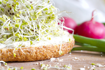 Radish sprouts on the sandwich healthy food closeup