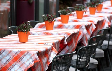 tables laid with checkered tablecloth for a stylish restaurant