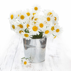 Chamomile in a bucket