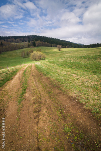 Amazing spring countryside - road through the pasture