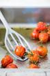 geschmorte Kirschtomaten