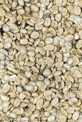 Coffee - Green Coffee Beans - Health Benefits