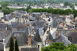 Roofs of Chinon town, Vienne  valley, France