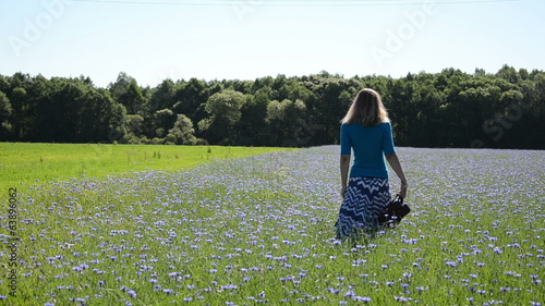 Woman walk through blue cornflower agricultural field in summer