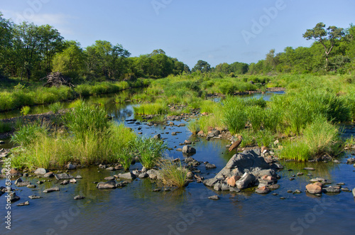 Beautiful african river landscape, Kruger national park