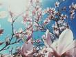 Frühling / Blüten