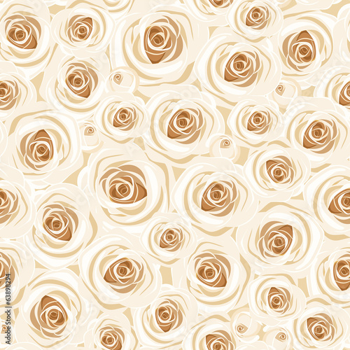 Seamless background with white roses. Vector illustration.