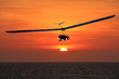 Leinwanddruck Bild - Hang Glider at sunset