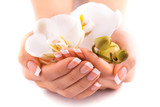 Fototapety beautiful french manicure with white orchid on white