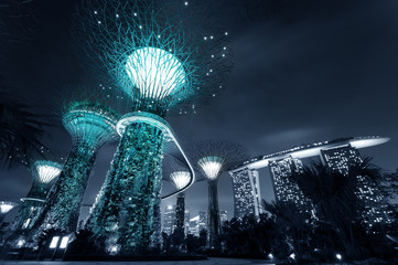 Gardens by the Bay or SuperTree Grove in Singapore. Night view
