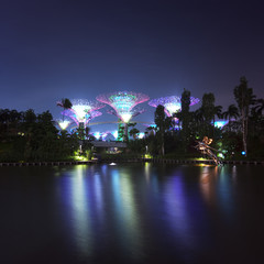 Singapore Garden by the Bay or Supertree Grove night view
