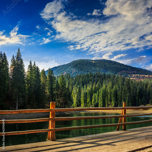 pier on lake in pine forest