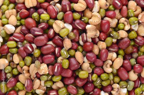 close up of different types of beans