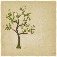pink flowers blossom tree