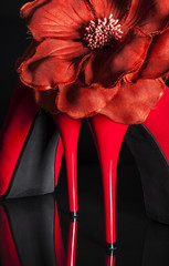 Female red high-heeled shoes over black background.
