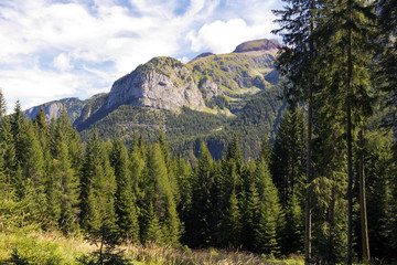 Adamello Natural Park