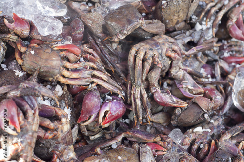 Preserved salty crabs in seafood market.