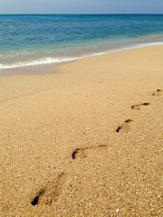 Footprints on the tropical sandy beach