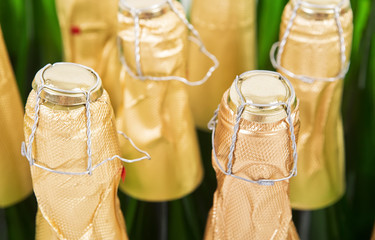 Bottles of champagne background