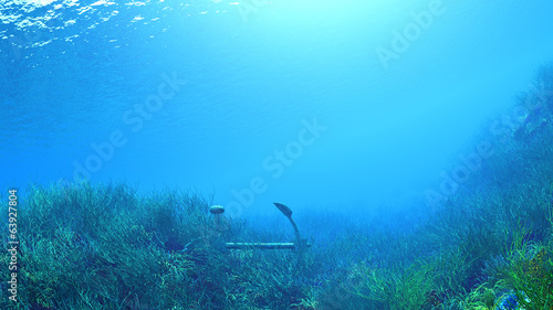 Tuinposter Koraalriffen sous la mer