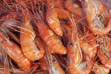 Steam prawns in seafood market.