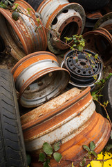 rusting car wheels in a scrapyard