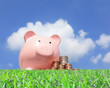 pink piggy bank and money