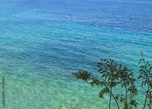 Clear blue tropical waters on sunny day.