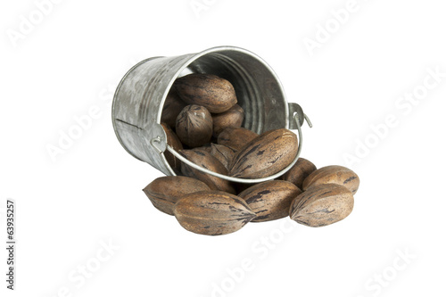Toppled Galvanized Bucket Spilling Unshelled Pecan Nuts