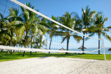 Tropical resort with volleyball court