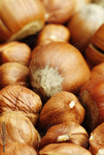Close-up of hazelnuts