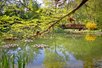Botanical garden lake spring view