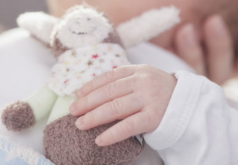 Hold cuddly toy