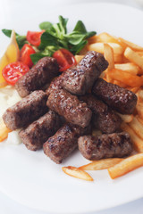 Grilled kebab with french fries