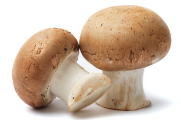 Portabello mushrooms