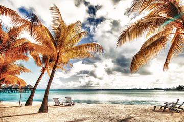 Beautiful view of the beach in Polynesia