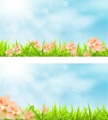 Primavera Banner