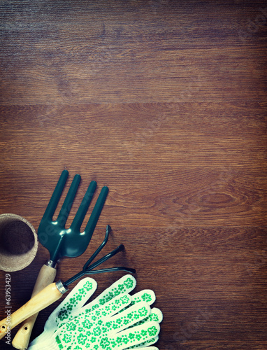 Garden tools and wooden background