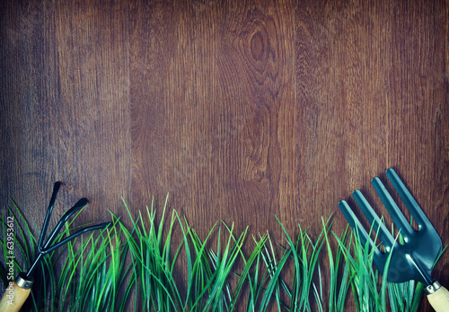 Gardening tools and grass over wooden background