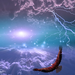 Eagle in flight beneath storm