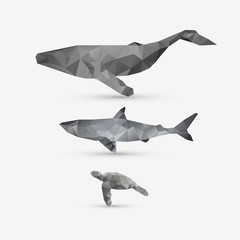 Vector abstract whale, shark, and turtle illustration set