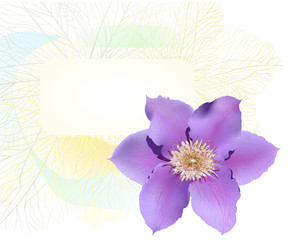 Postcard with clematis flower.
