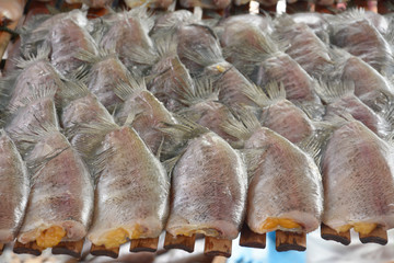 drying snakeskin gourami fishs in threshing basket drying snakes