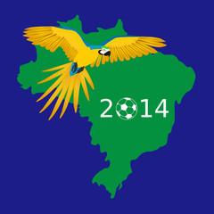 Fussball 2014 Papagei