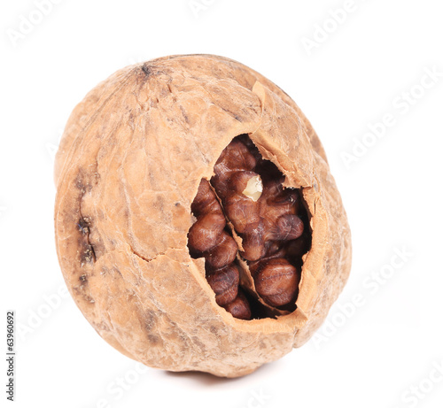 Cracked walnut.
