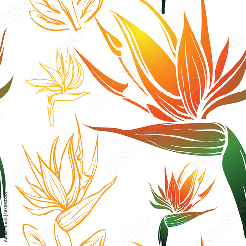 bird of paradise exotic tropic flower seamless texture