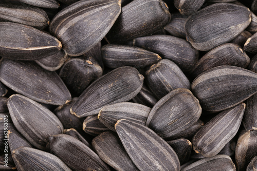 Organic sunflower seeds.