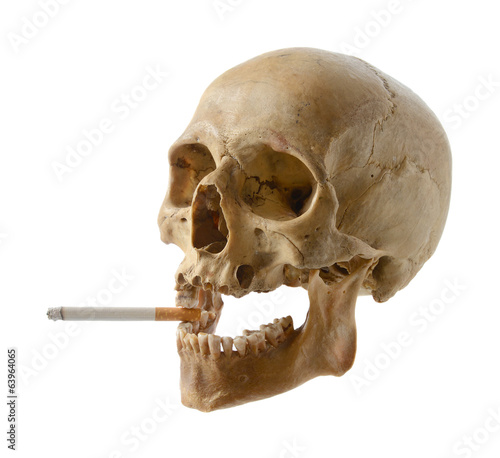 Skull of the person with a cigarette.