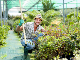farmer at work in a greenhouse